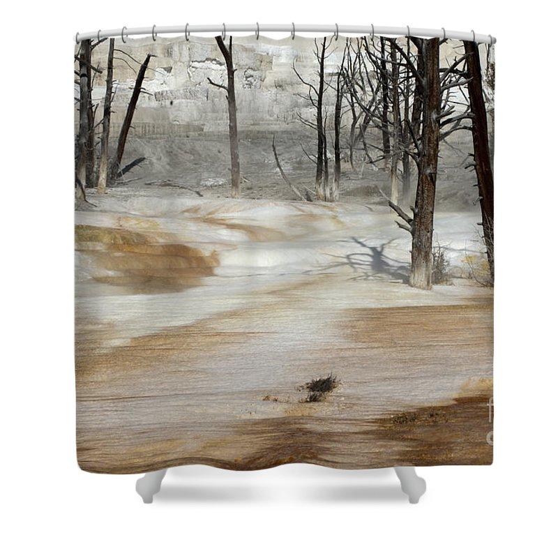 Yellowstone Shower Curtain featuring the photograph Mammoth Terrace Runoff by Sandra Bronstein