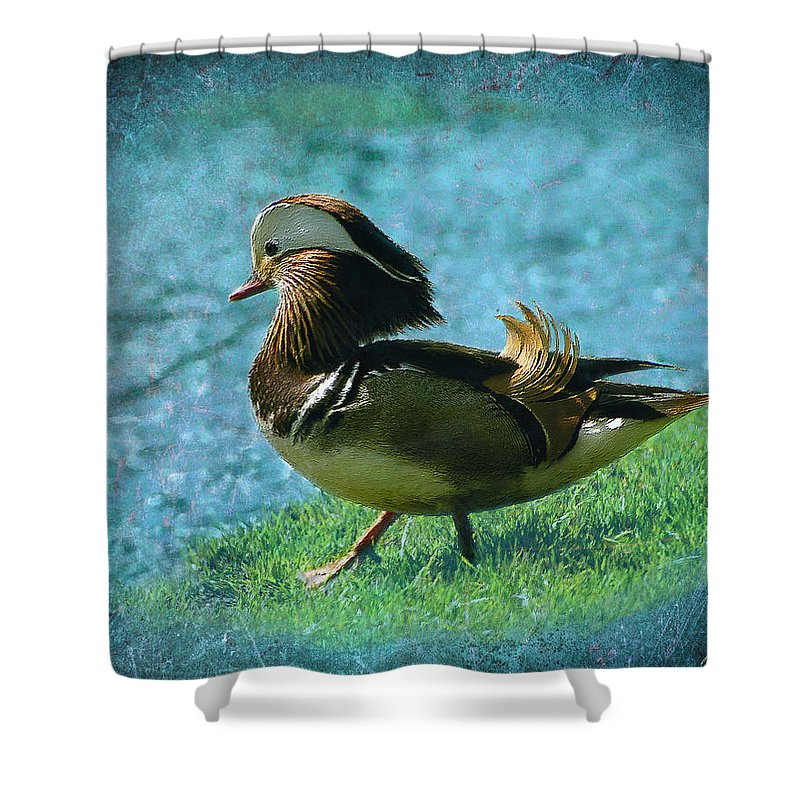 Mandarin Shower Curtain featuring the photograph Mandy by Diana Haronis