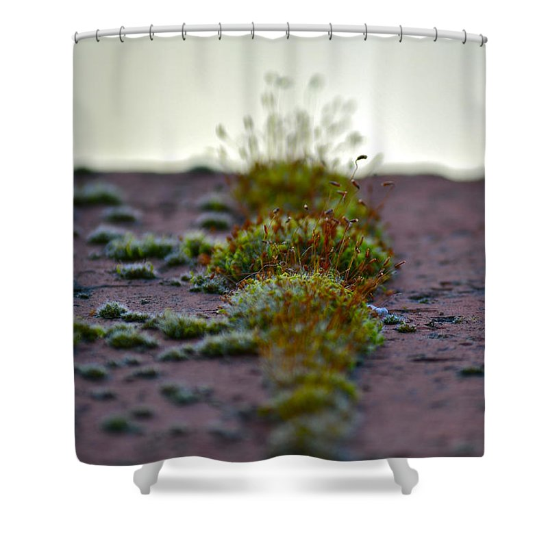 Macro Photography Shower Curtain featuring the photograph Martian Landscape by Bill Owen
