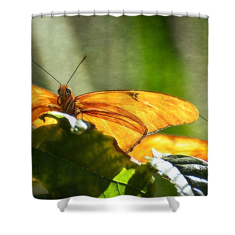 Julia Butterfly Shower Curtain featuring the photograph Me And My Shadow by Saija Lehtonen