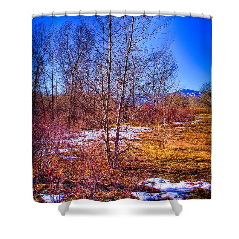 Denver Shower Curtain featuring the photograph Melting Snow In South Platte Park by David Patterson