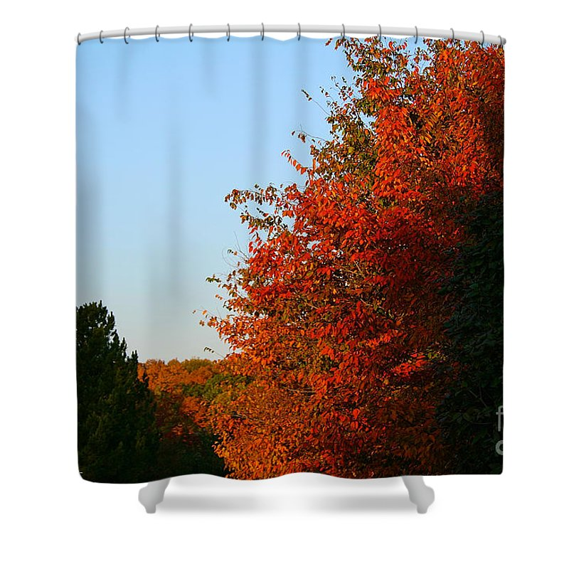 Outdoors Shower Curtain featuring the photograph Minnesota Morning by Susan Herber