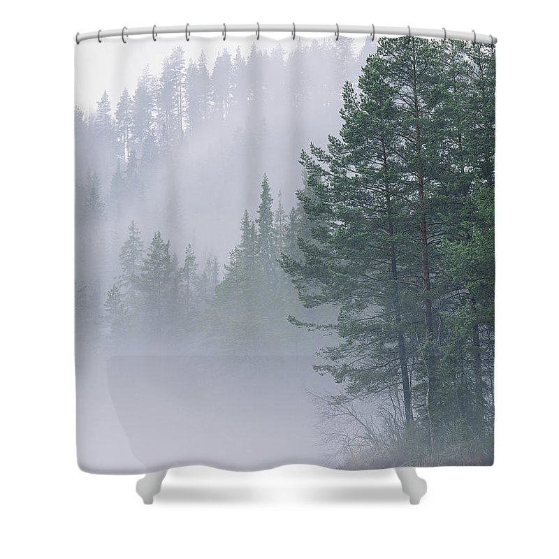 Forests And Forestry Shower Curtain featuring the photograph Mist Rises From An Evergreen Forest by Mattias Klum