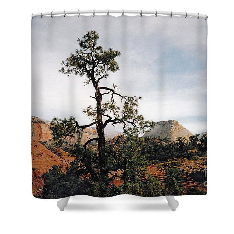 Zion Canyon Shower Curtain featuring the photograph Misty Morning In Zion Canyon by Byron Varvarigos