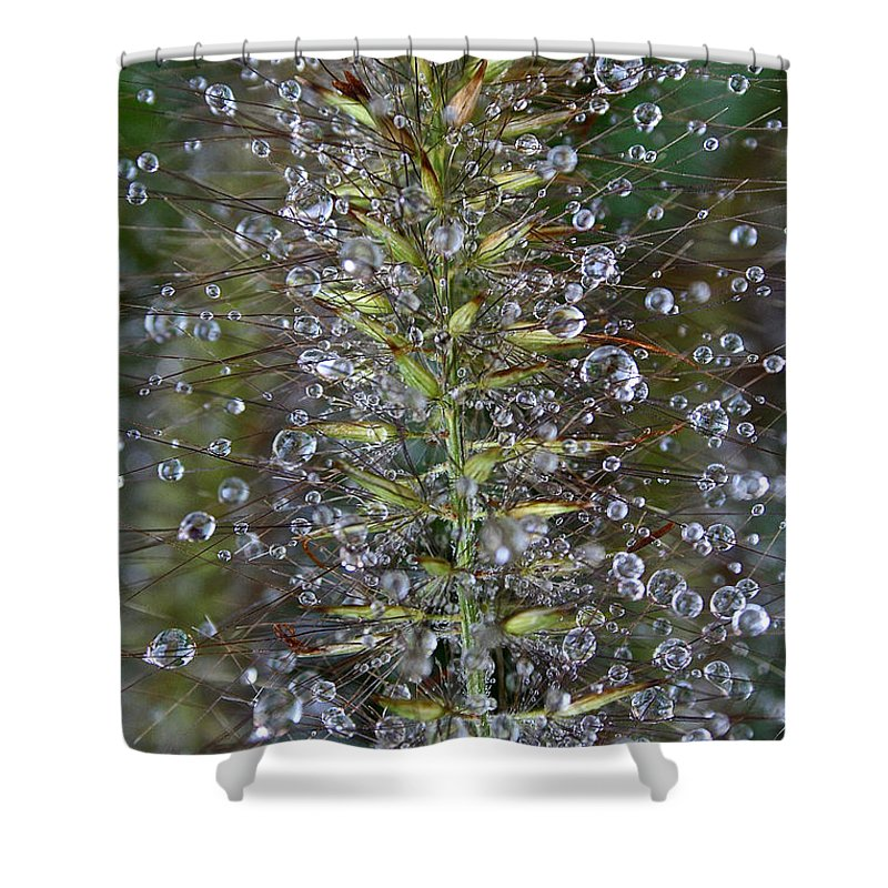 Outdoors Shower Curtain featuring the photograph Moisture by Susan Herber