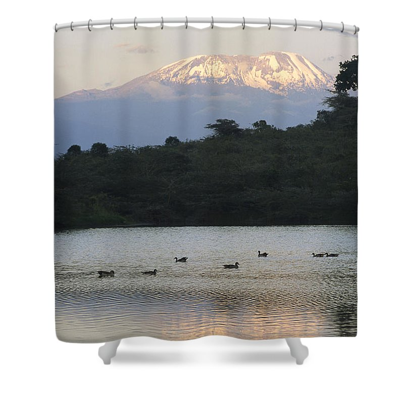 Africa Shower Curtain featuring the photograph Mount Kilimanjaro Rises Above One by Richard Nowitz