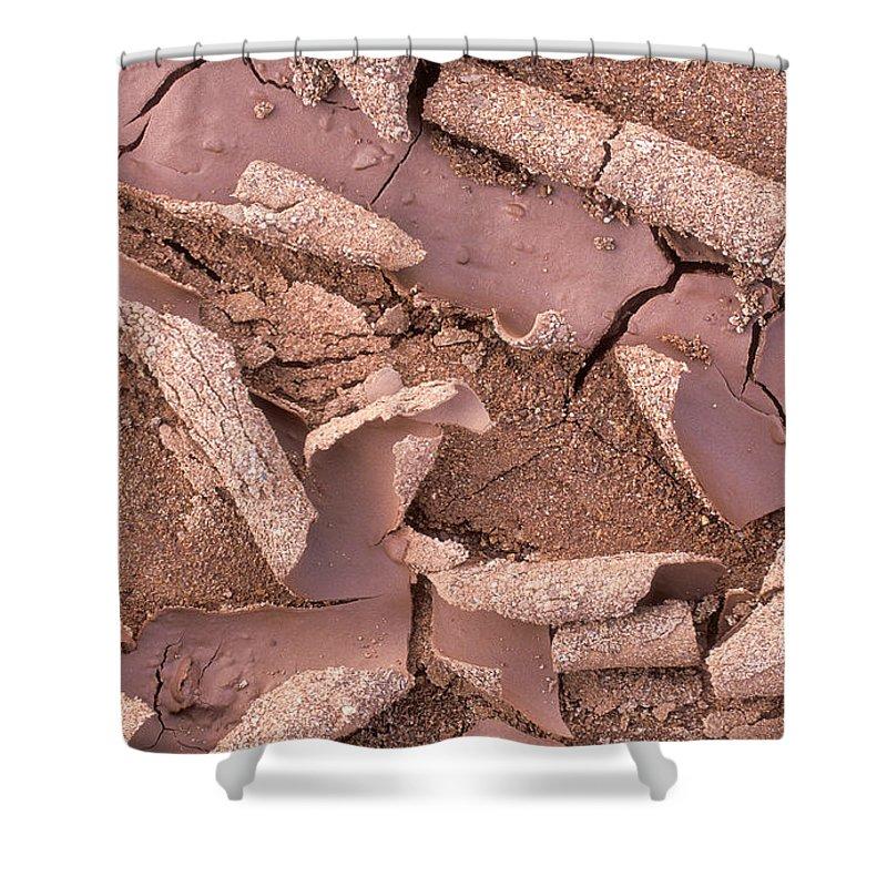 Bronstein Shower Curtain featuring the photograph Mud Curls by Sandra Bronstein