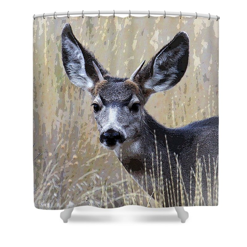 Mule Deer Shower Curtain featuring the photograph Mule Deer Spike by Steve McKinzie