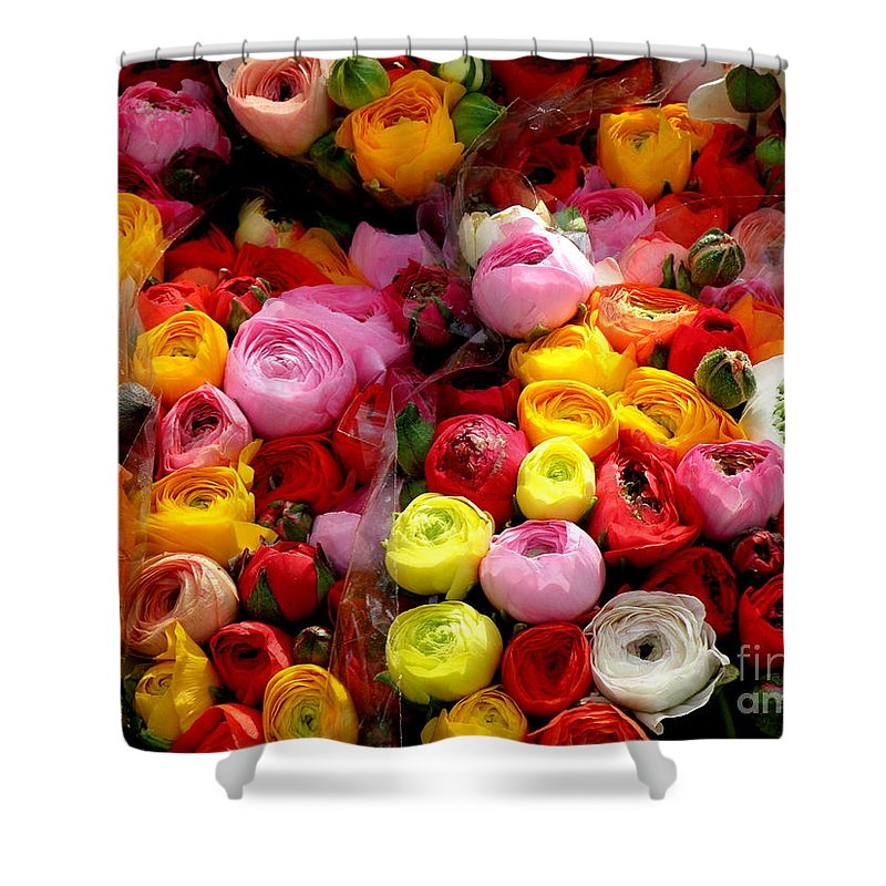 Flowers Shower Curtain featuring the photograph Multicolor by Lainie Wrightson