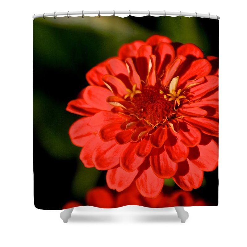 Mum Shower Curtain featuring the photograph Mum In The Sun by Eric Tressler