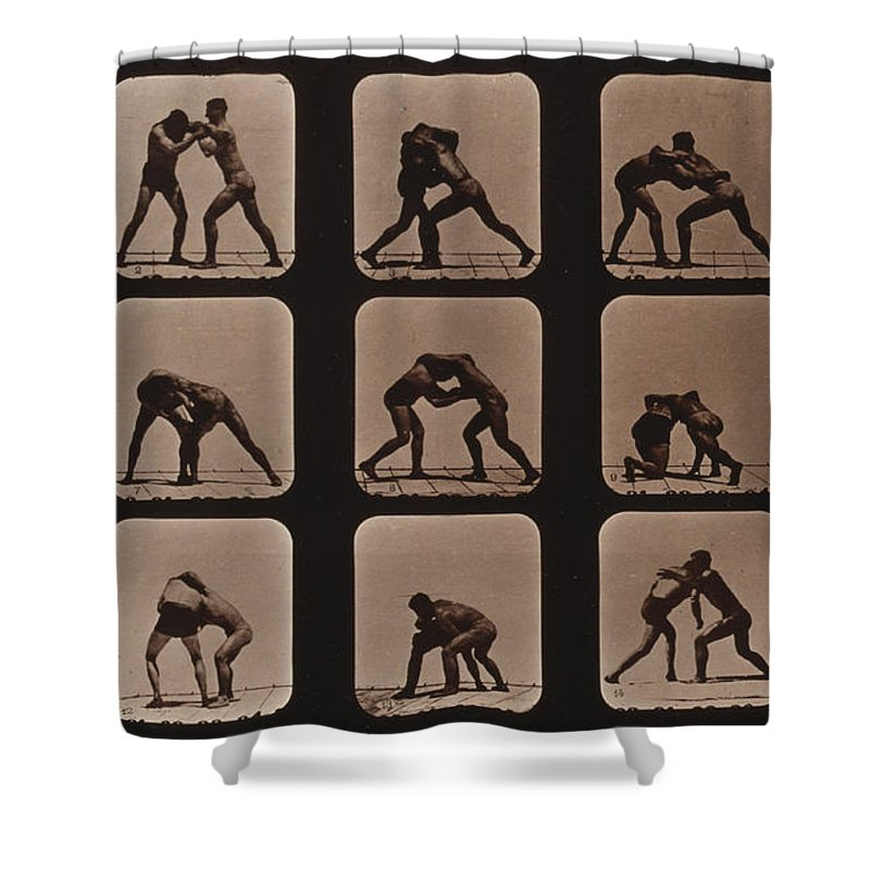 Technology Shower Curtain featuring the photograph Muybridge Locomotion, Men Wrestling by Photo Researchers