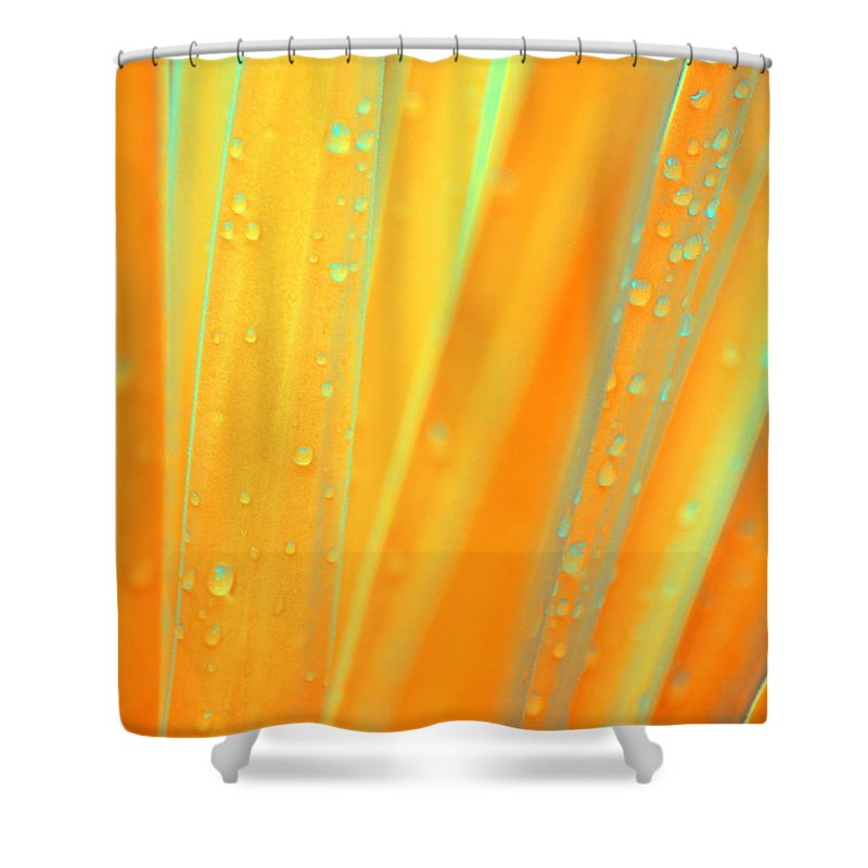 Natural Shower Curtain featuring the photograph Natural Abstract 22 by Maria Urso