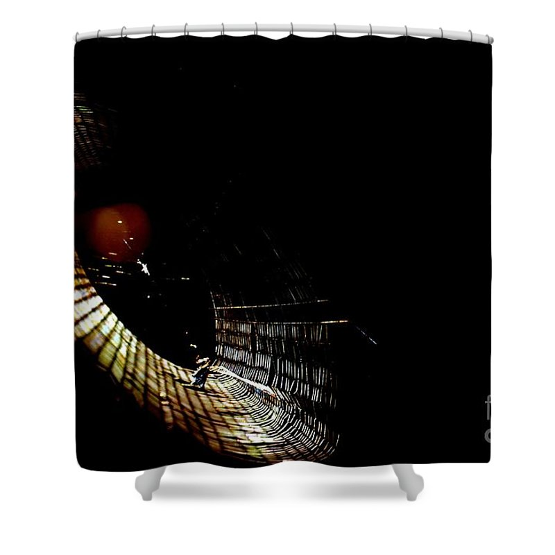 Natural Shower Curtain featuring the photograph Natural Abstract 31 by Maria Urso