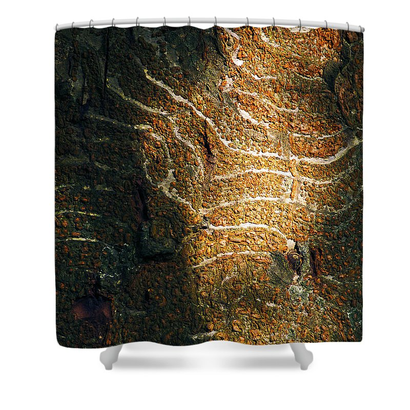 Fine Art Photography Shower Curtain featuring the photograph Nature's Abstractions IIi by Patricia Griffin Brett