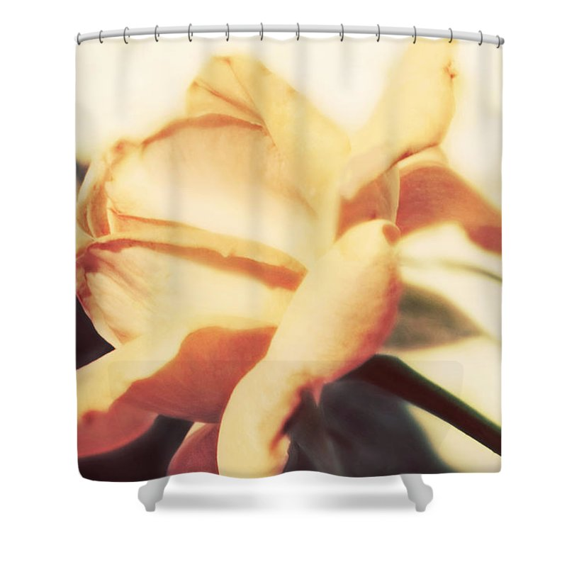 Flower Shower Curtain featuring the photograph Nature's Dreams by Janie Johnson