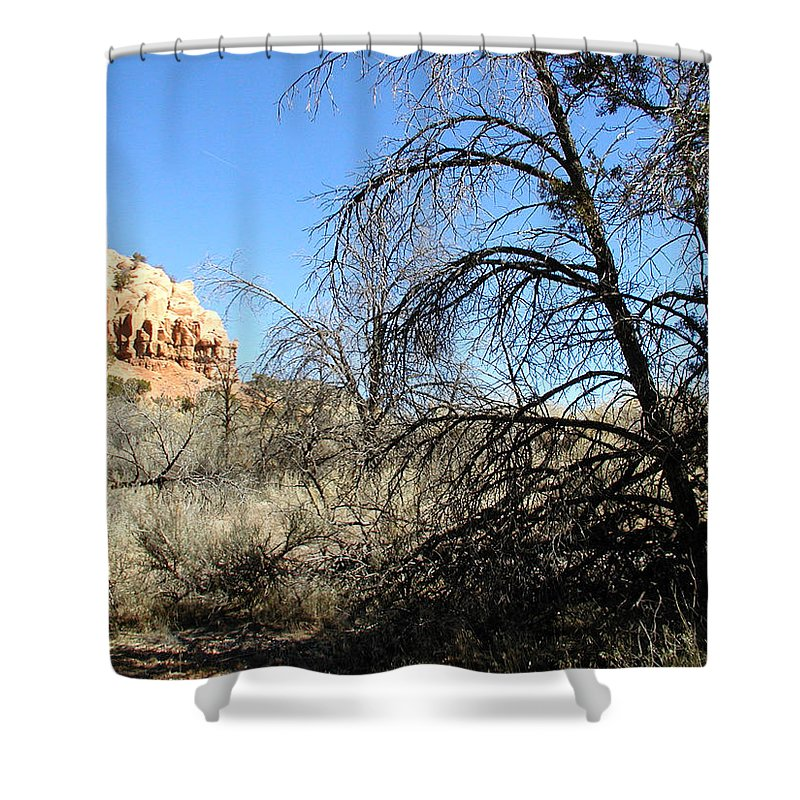 Landscape Shower Curtain featuring the photograph New Mexico Series - Bandelier II by Kathleen Grace