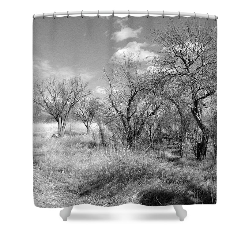 Landscape Shower Curtain featuring the photograph New Mexico Series - Bare Beauty by Kathleen Grace