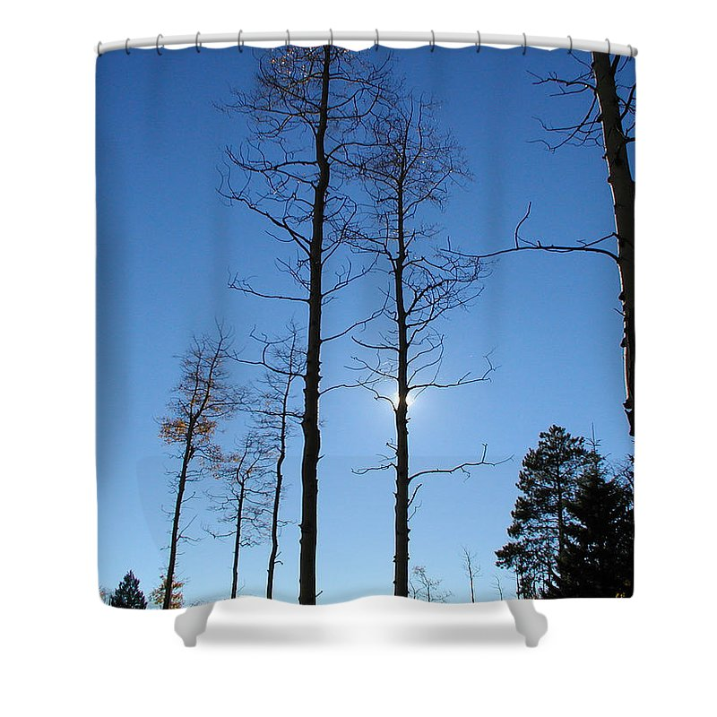Landscape Shower Curtain featuring the photograph New Mexico Series - Bare Tree Sky by Kathleen Grace