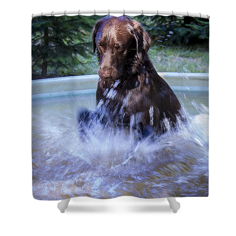 Jean Noren Shower Curtain featuring the photograph Nute Splashing by Jean Noren