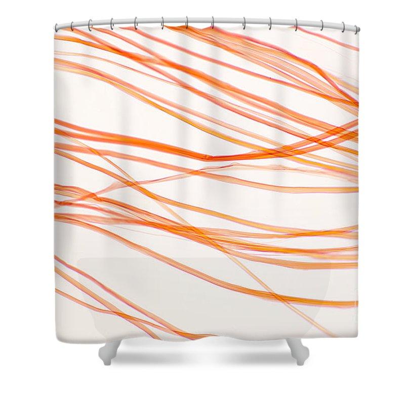 Nylon Fiber Shower Curtains   Fine Art America