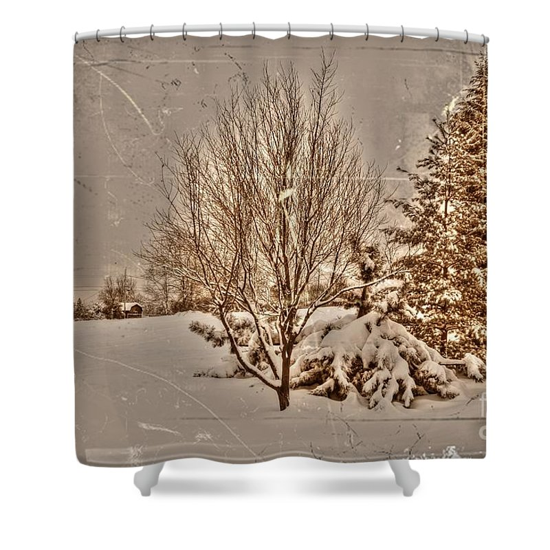 Alone Shower Curtain featuring the photograph Old Country Christmas by Dan Stone