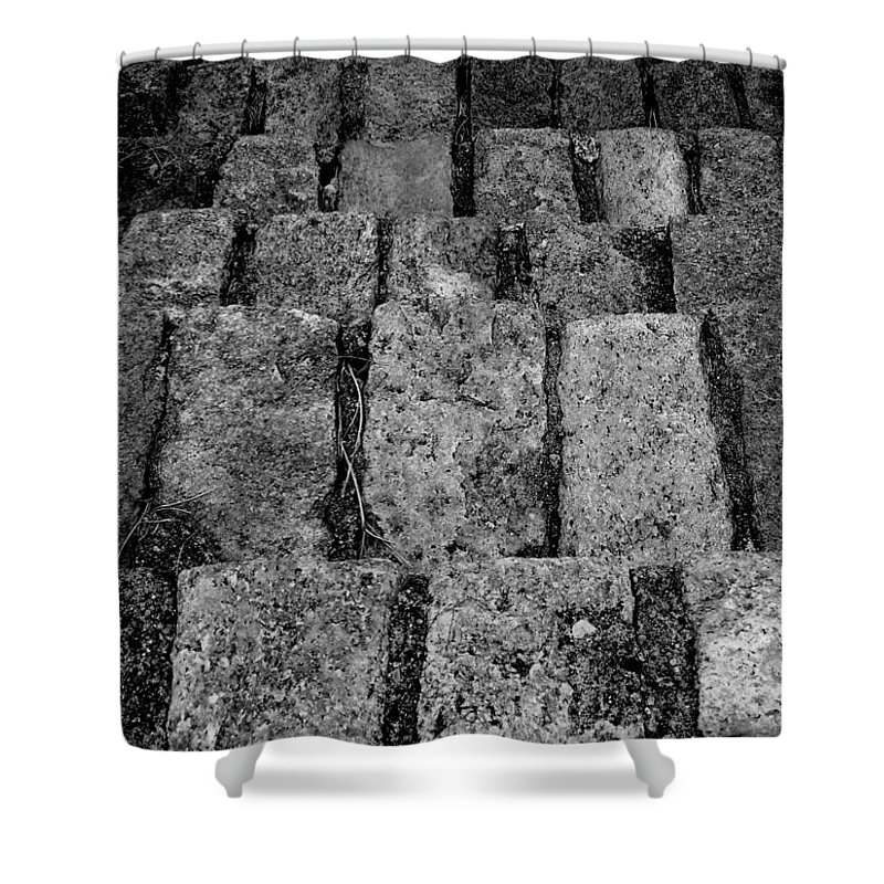 Old Park Steps Shower Curtain featuring the photograph Old Park Steps by Ed Smith
