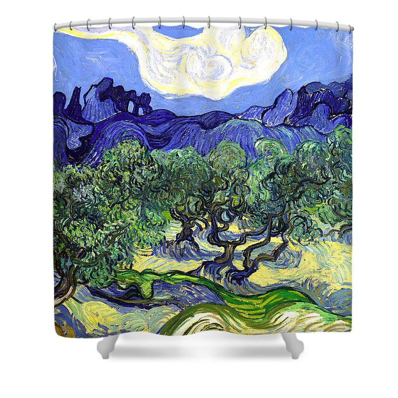 Farm Shower Curtain featuring the painting Olive Garden by Sumit Mehndiratta