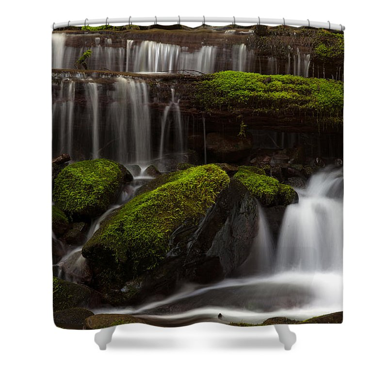 Olympic National Park Shower Curtain featuring the photograph Olympics Gentle Stream by Mike Reid
