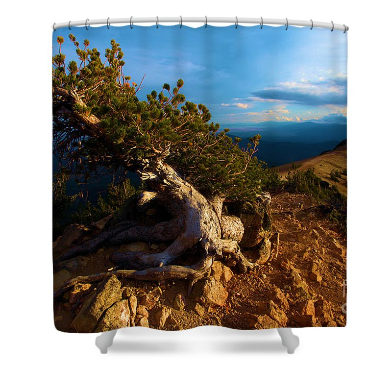 Crater Lake National Park Shower Curtain featuring the photograph On The Edge by Adam Jewell