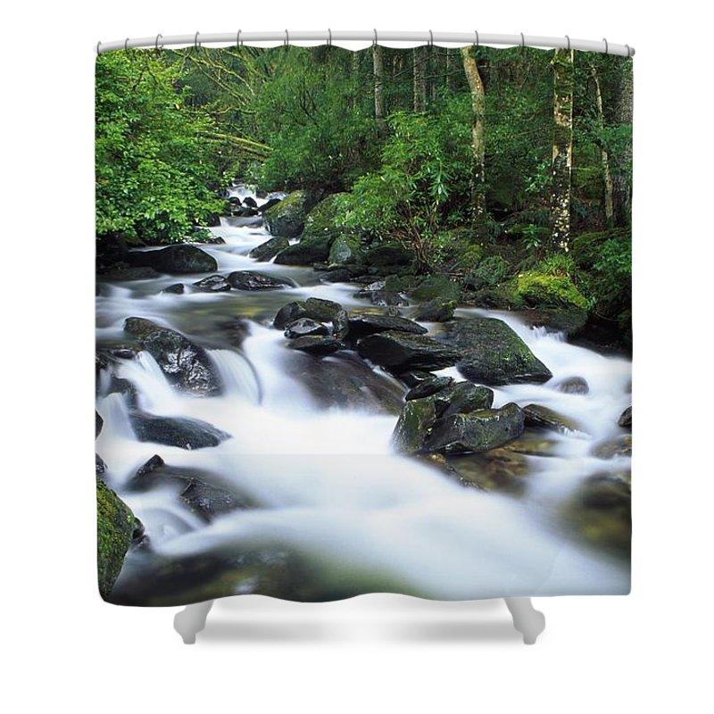 Creek Shower Curtain featuring the photograph Owengarriff River, Killarney National by Richard Cummins
