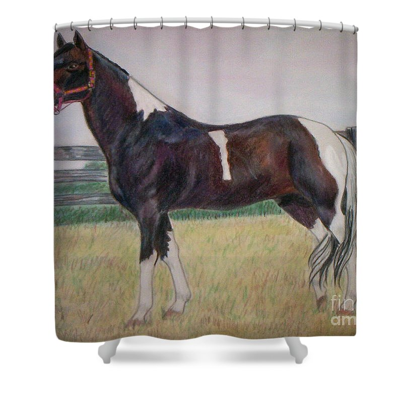 Paint Pony Shower Curtain featuring the drawing Paint by Julie Brugh Riffey