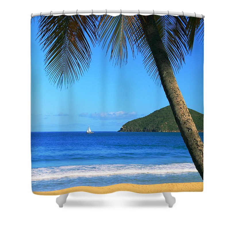 Palm Tree Shower Curtain featuring the photograph Palm Shaded Island Beach by Roupen Baker