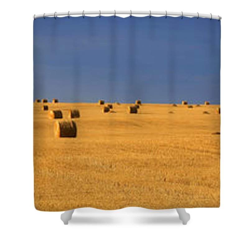 Light Shower Curtain featuring the photograph Panoramic Of A Straw Field, Near Val by Robert Postma