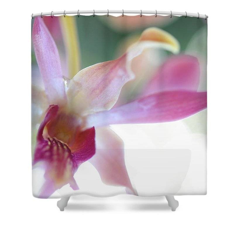Flowers Shower Curtain featuring the photograph Passion For Flowers. Sensualite by Jenny Rainbow