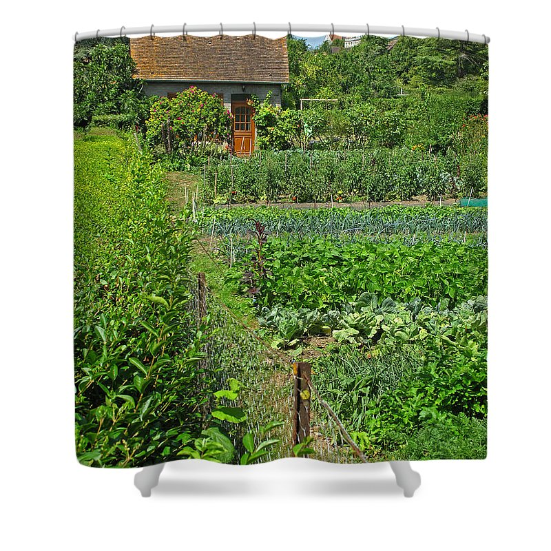 France Shower Curtain featuring the photograph Peeking Into A Garden by Dave Mills