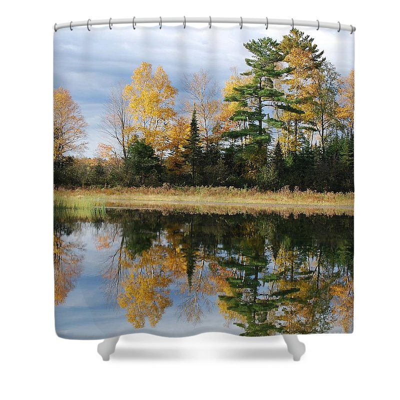 Trees Shower Curtain featuring the photograph Perfect Reflection by Sharon Molinaro