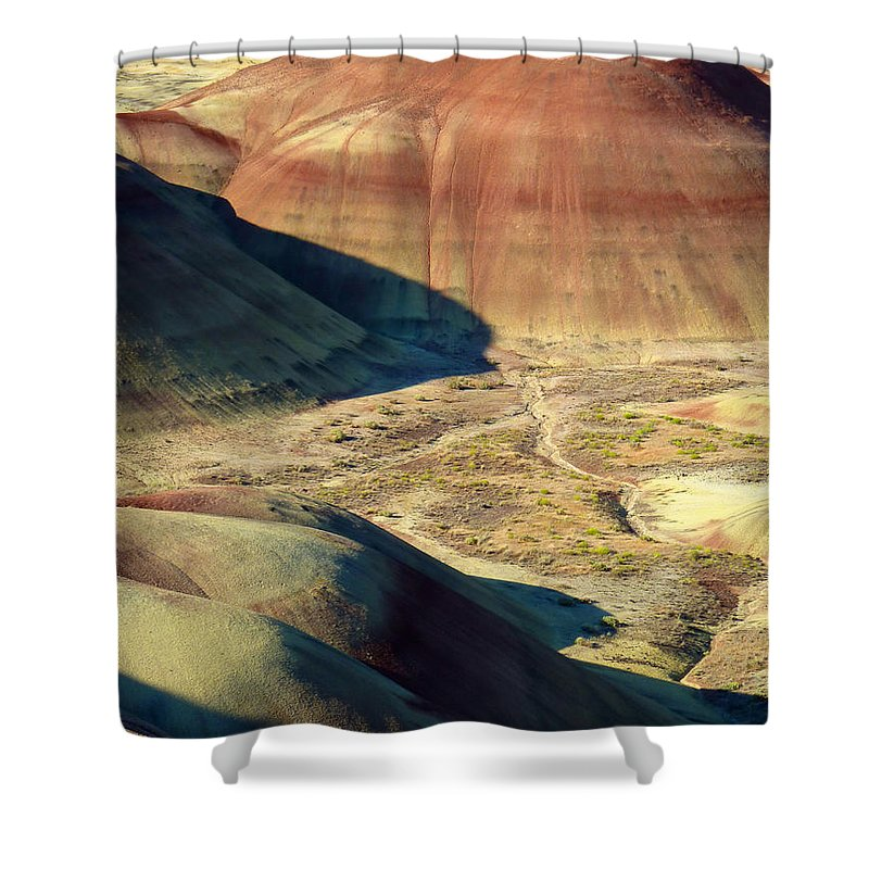 Still Life Shower Curtain featuring the photograph Peyote by Lauren Leigh Hunter Fine Art Photography