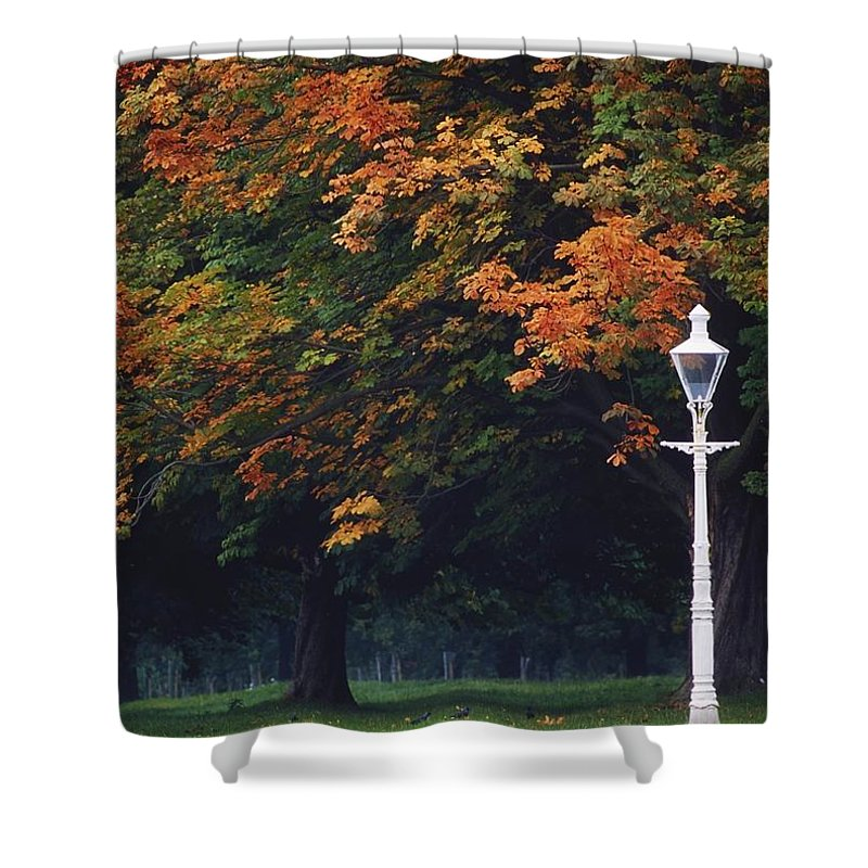 Outdoors Shower Curtain featuring the photograph Phoenix Park, Dublin, Co Dublin by The Irish Image Collection