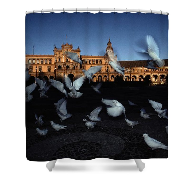 Europe Shower Curtain featuring the photograph Pigeons Flutter Above The Plaza De by Steve Winter