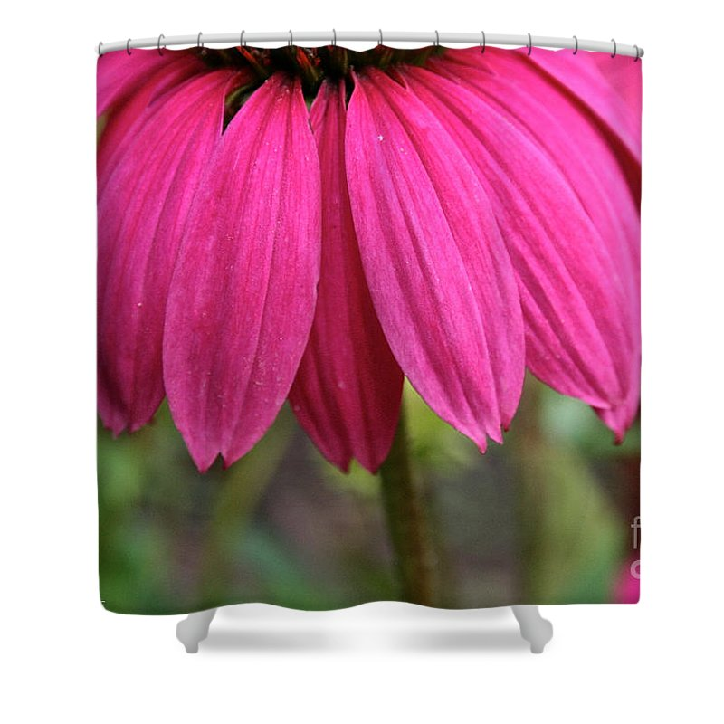 Plant Shower Curtain featuring the photograph Pink Skirts by Susan Herber
