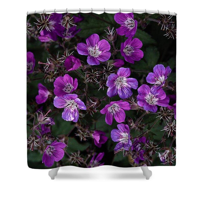 Plants Shower Curtain featuring the photograph Pinkish-purple Wildflowers Geranium by Mattias Klum