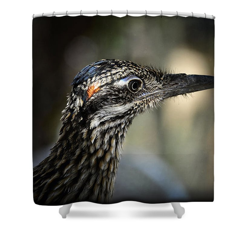 Greater Roadrunner Shower Curtain featuring the photograph Portrait Of A Roadrunner by Saija Lehtonen