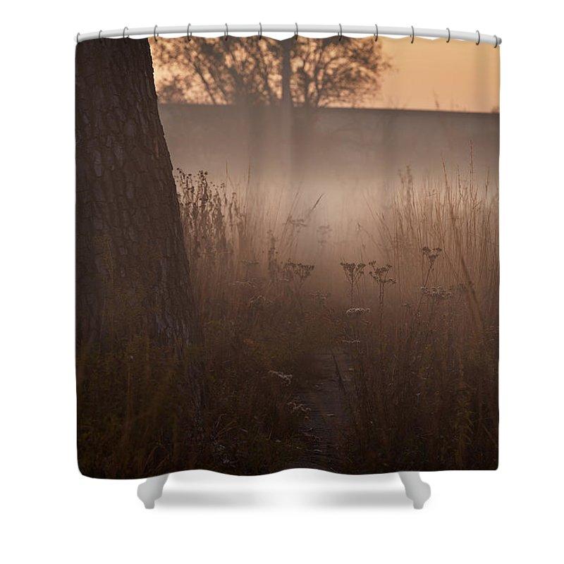 Tree Shower Curtain featuring the photograph Prairie Pre Dawn by Steve Gadomski