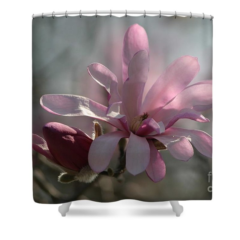 Floral Shower Curtain featuring the photograph Pristine Pastels by Living Color Photography Lorraine Lynch