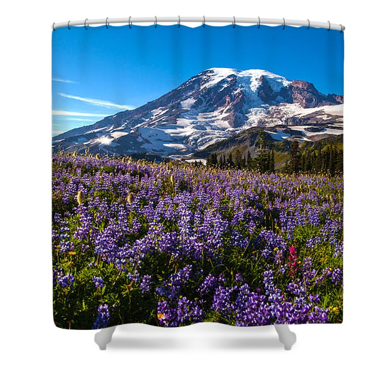 Rainier Shower Curtain featuring the photograph Purple Fields Forever by Mike Reid
