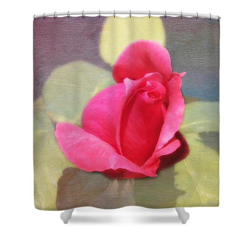 Florals Shower Curtain featuring the photograph Rainbow Rose by Linda Dunn