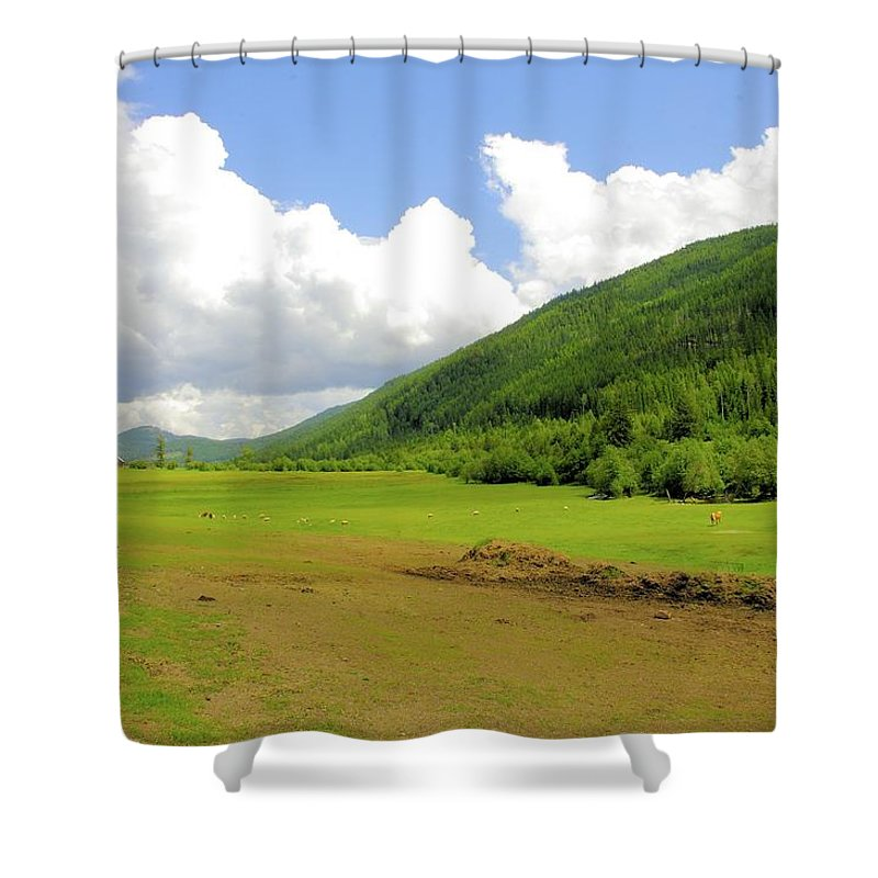 Ranching Shower Curtain featuring the photograph Ranching In The Boundary by John Greaves