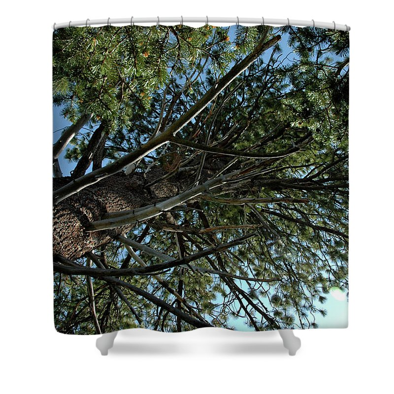 Usa Shower Curtain featuring the photograph Reach For The Sky by LeeAnn McLaneGoetz McLaneGoetzStudioLLCcom