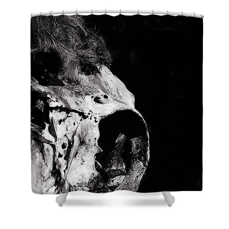 Nature Shower Curtain featuring the photograph Ready For My Closeup by Susan Capuano