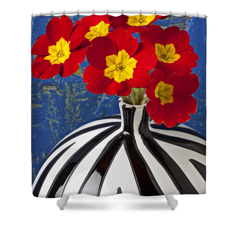 Red Shower Curtain featuring the photograph Red And Yellow Primrose by Garry Gay
